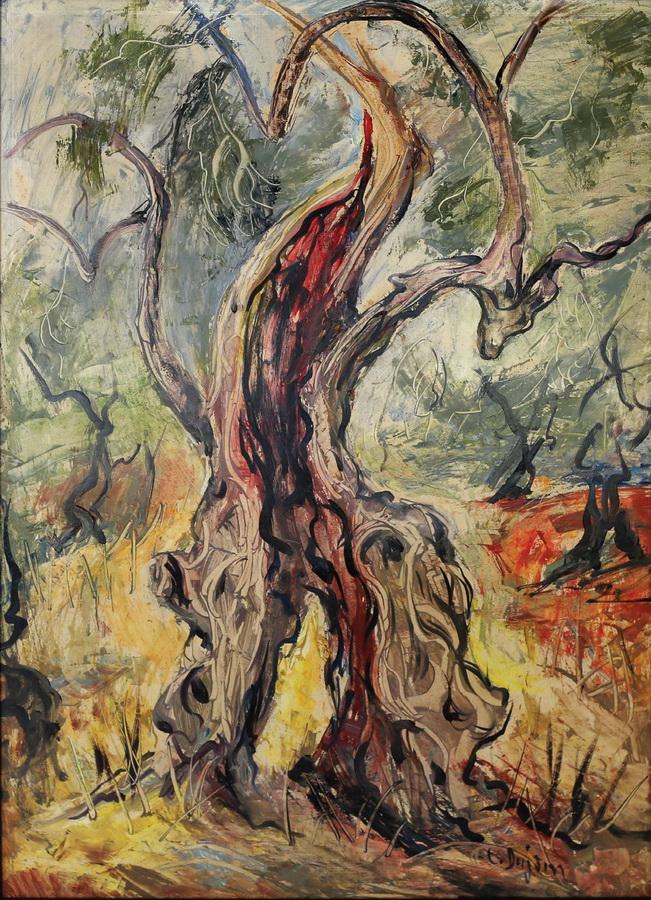 Cata Dujšin Ribar - Stara maslina, 1970., ulje na platnu, 67x48.JPG