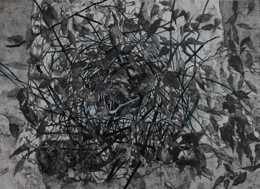 Gnijezdo, tekući grafit na papiru, 61x84