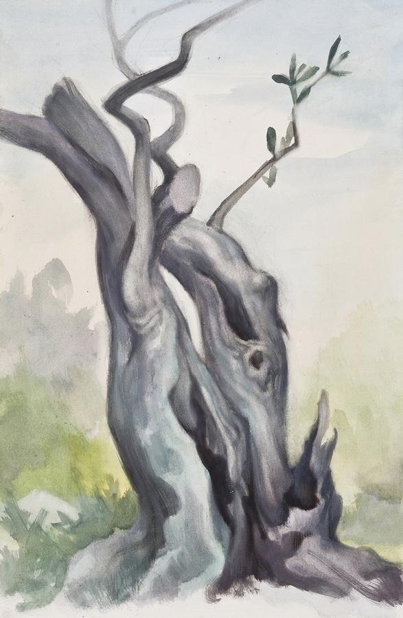 Život i smrt masline, 2013. (triptih)