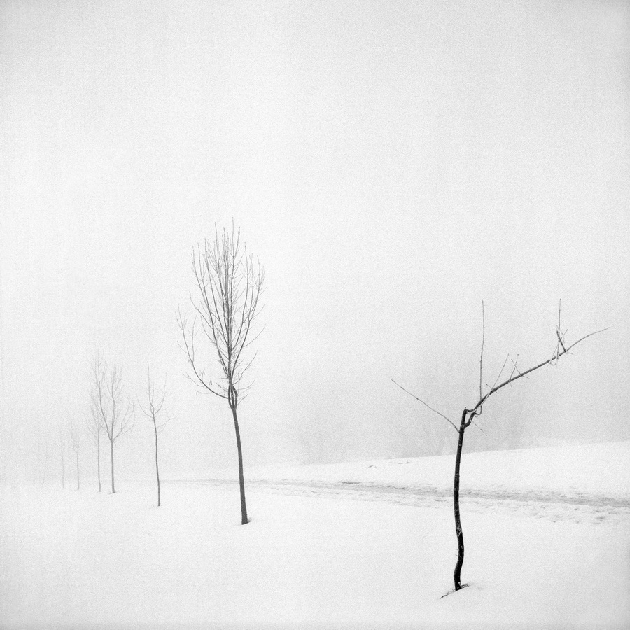 Max Juhasz - Maladjusted; CB fotografija,  60x60cm, 1999.